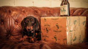 Perro y cerveza en un sofá de un restaurante