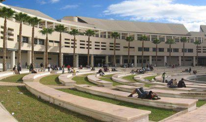 TOP 5 carreras más demandadas en la Universidad de Alicante