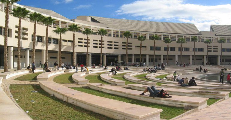 TOP 5 carreras más demandadas en la Universidad de Alicante